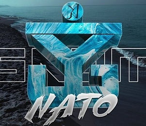 NATO_edited_edited.jpg