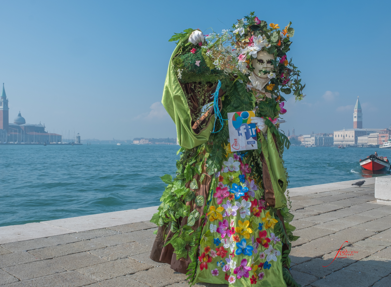FAC-200217-Venise,Carnaval-13716