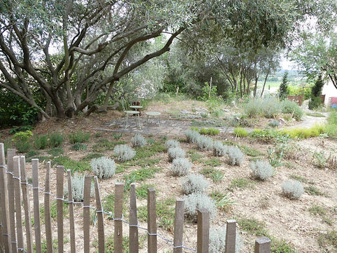 paysagiste-jardin-sans-arrosage-banne-ardeche