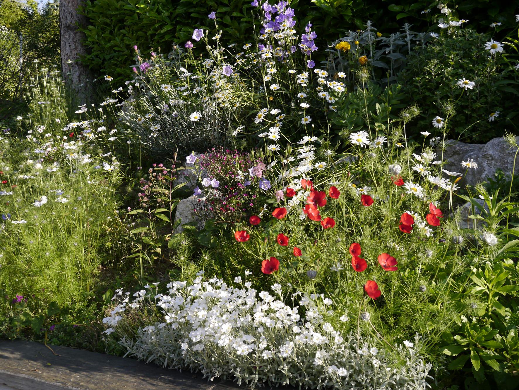 Dry Stone Patio Gardens Ardeche Gard Vaucluse Nr Landscaping