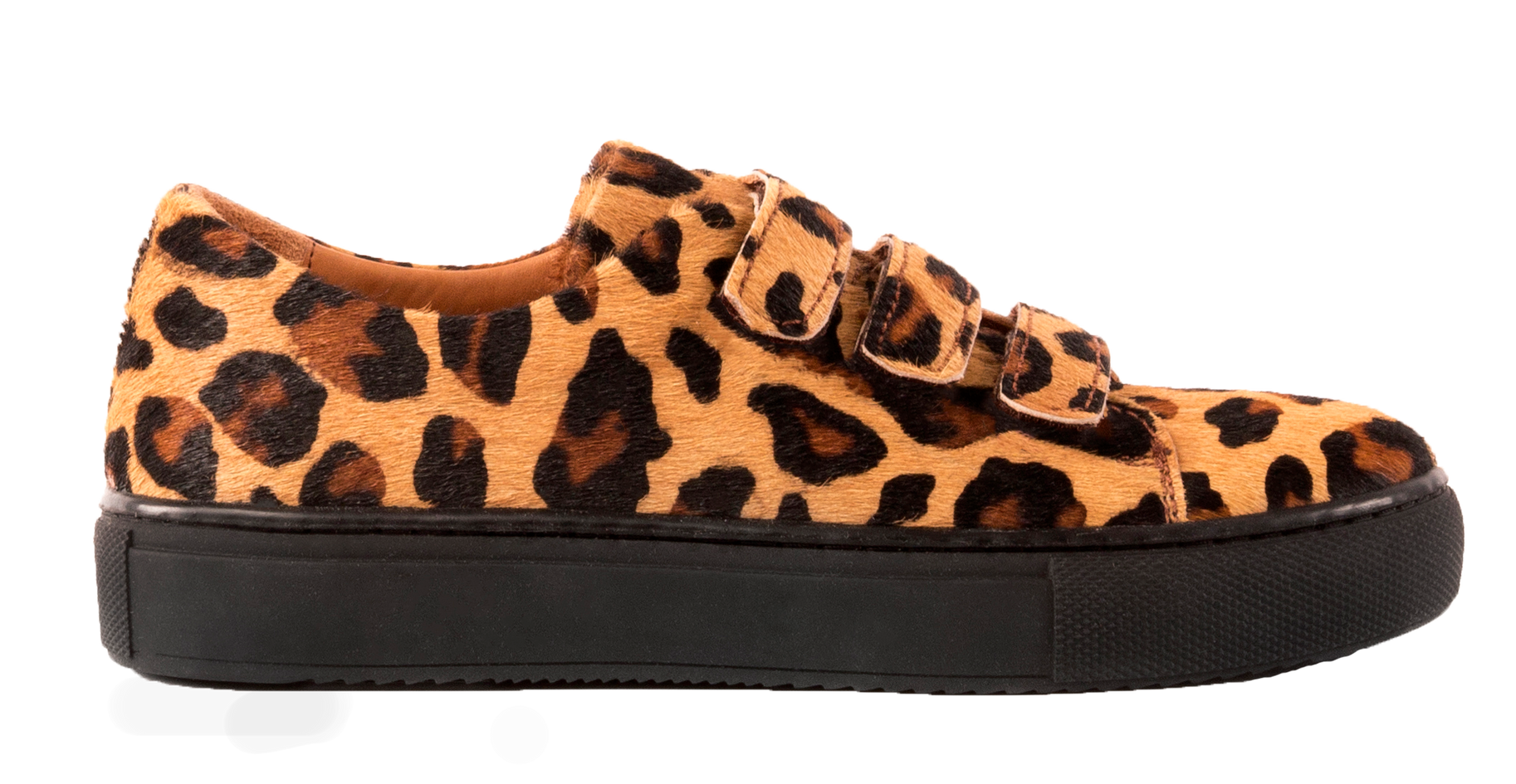 LISEN leopard.png