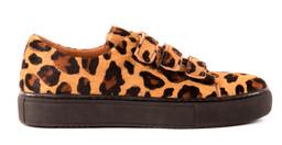 LISEN leopard.jpg