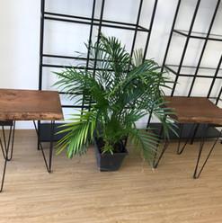 Honey Locust Side Table