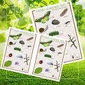 free nature printables.png
