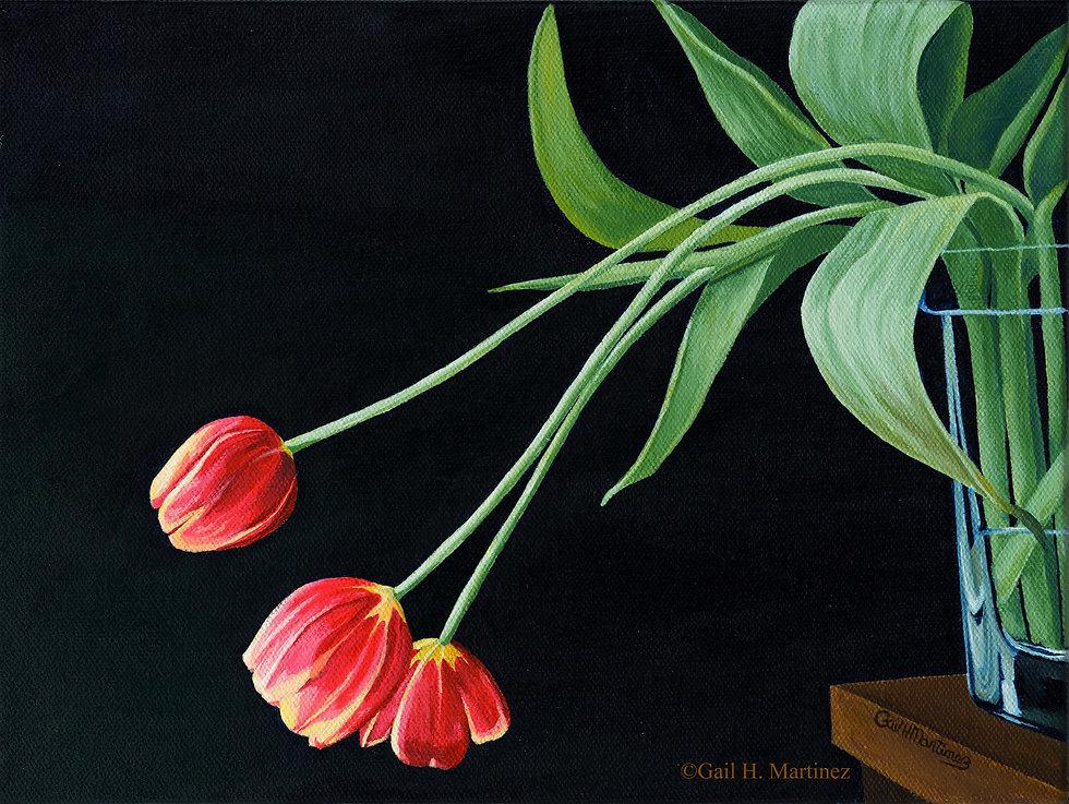 Tulips in Repose c.jpg