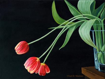 Tulips in Repose