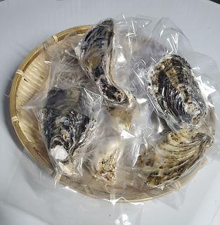 パック牡蠣.jpg