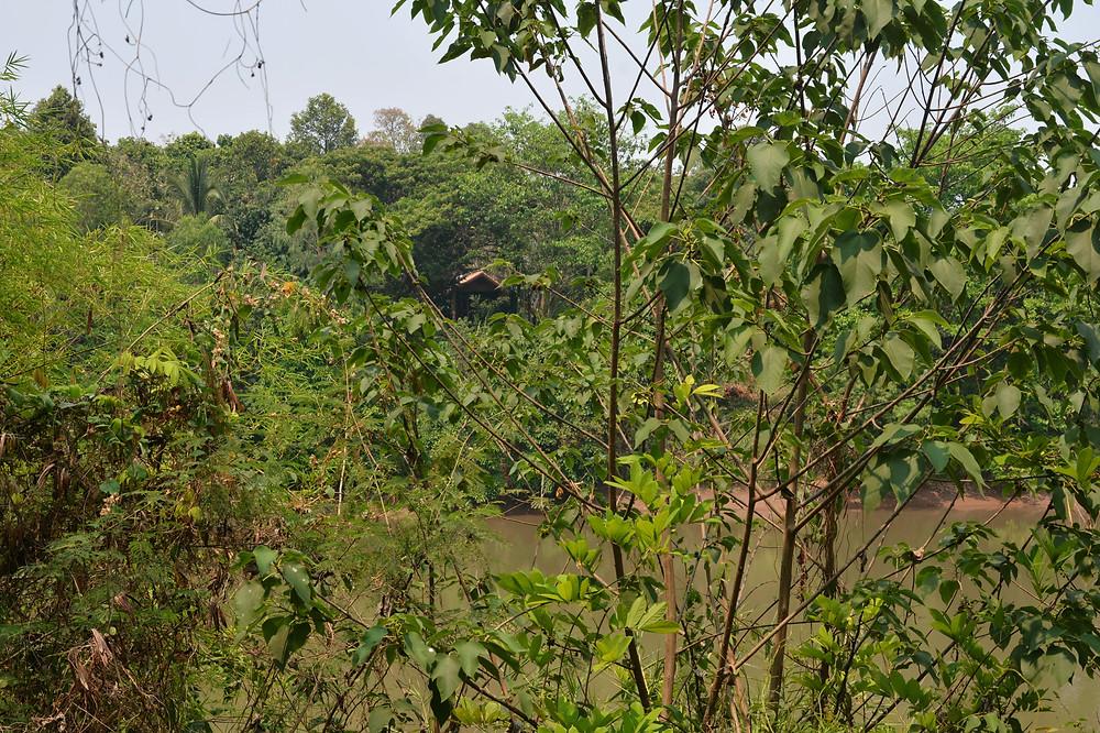 D&G Resort on the Nan River