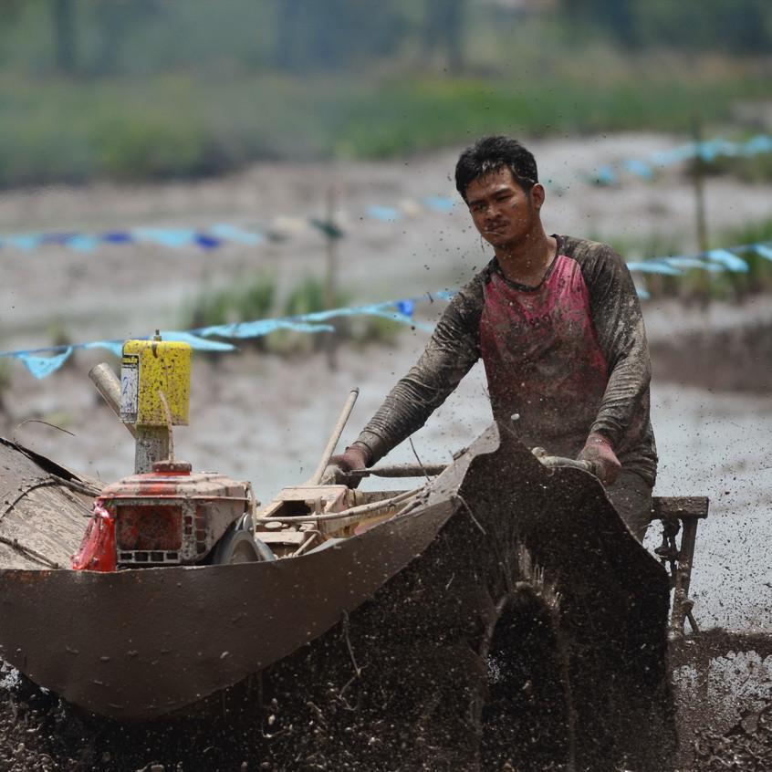 Damn the mud, full steam ahead