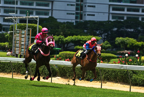 Horse racing in Bangkok.