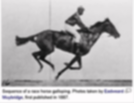 Eadweard Muybridge photographs horses in 1887.