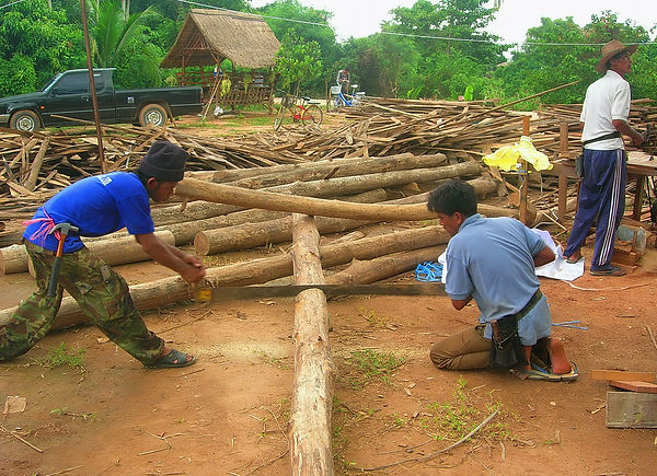Workers in Thailand cutting logs using the old-fashioned method.