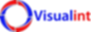 Visualint Logo.png