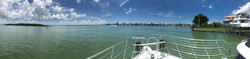 Dolphin Yacht Tours Madeira Florida
