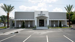 Tampa Luxury Interior Designers   Crespo Design Group   Sacred Pepper Project