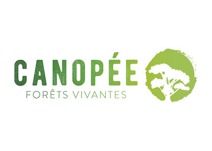 canopee_portfolio.jpg