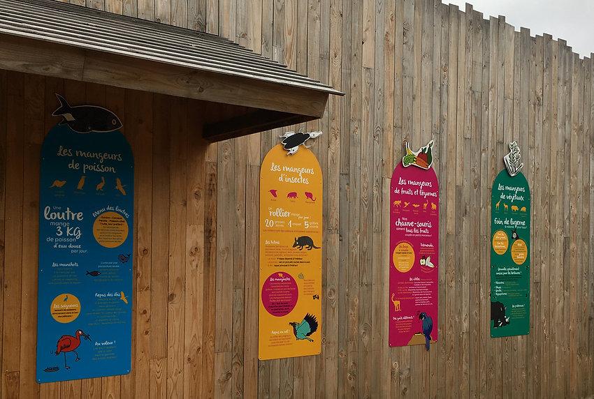 Bioparc, Zoo, Doué-la-Fontaine, animaux, exposition, tourisme, édition, graphisme, communication, design by la Fabrique Rouge, Angers, Maine et Loire