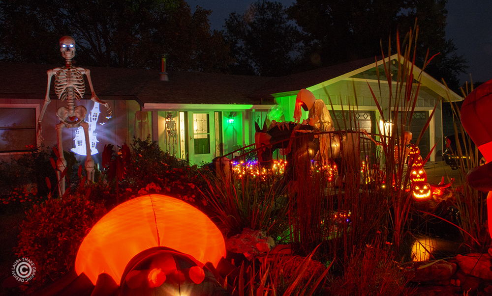 A 12 foot skeleton dominates the Halloween decorations in this yard in Fenton MO.