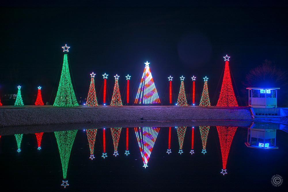 Holiday lights set to music, reflecting on a lake.