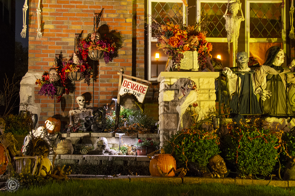 Skeletons and pumpkins for Halloween decorations.
