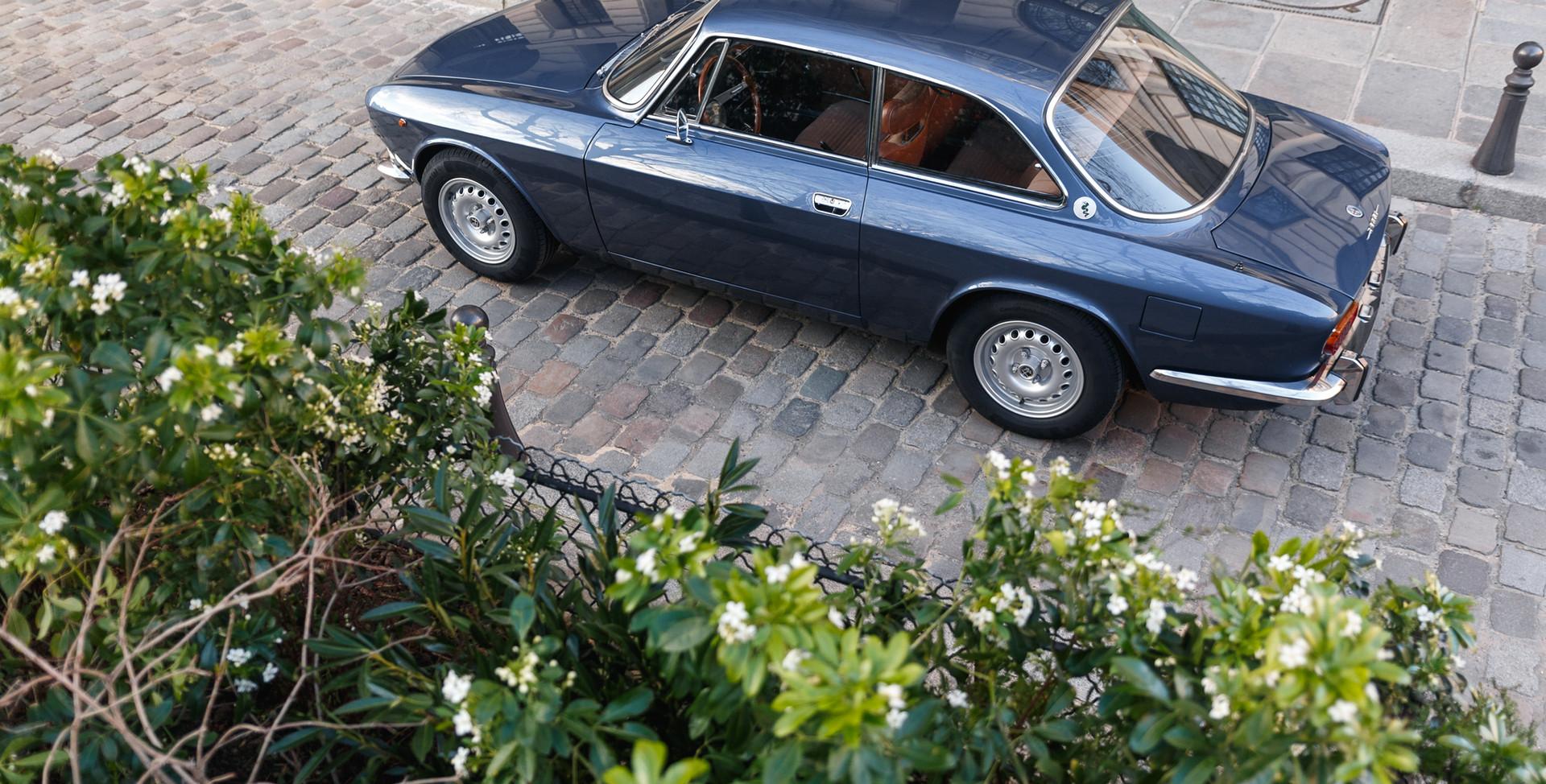 Alfa Romeo 2000 profil (3).jpg