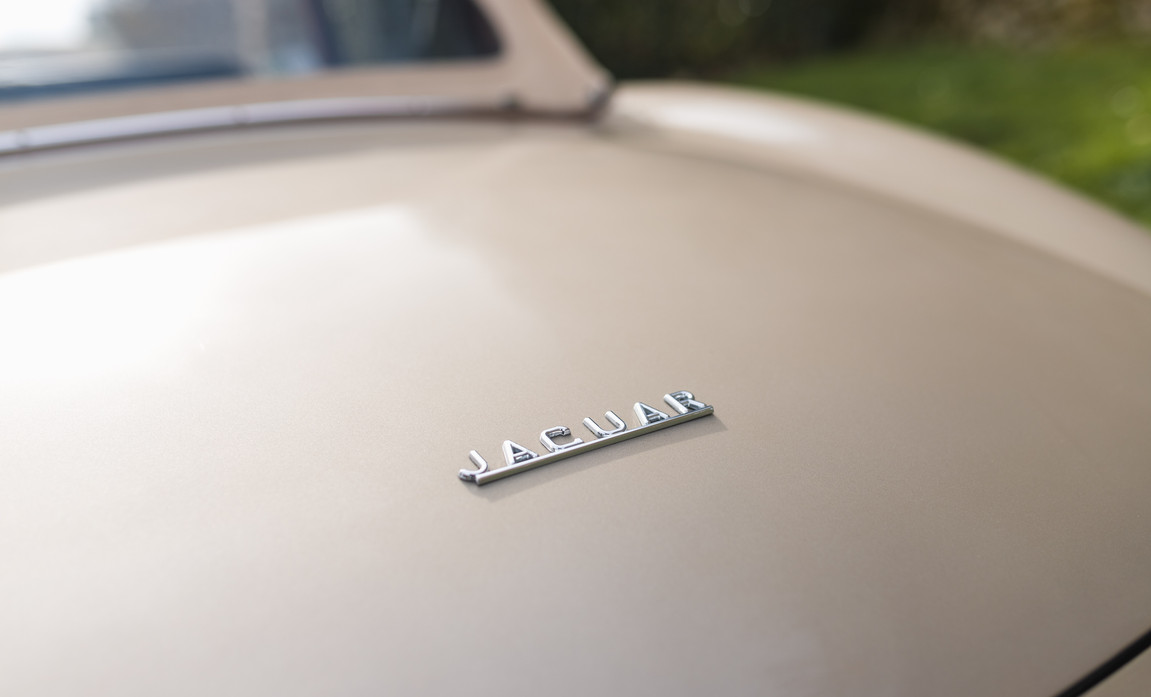 Jaguar Type-E Serie I Cabriolet (33).jpg