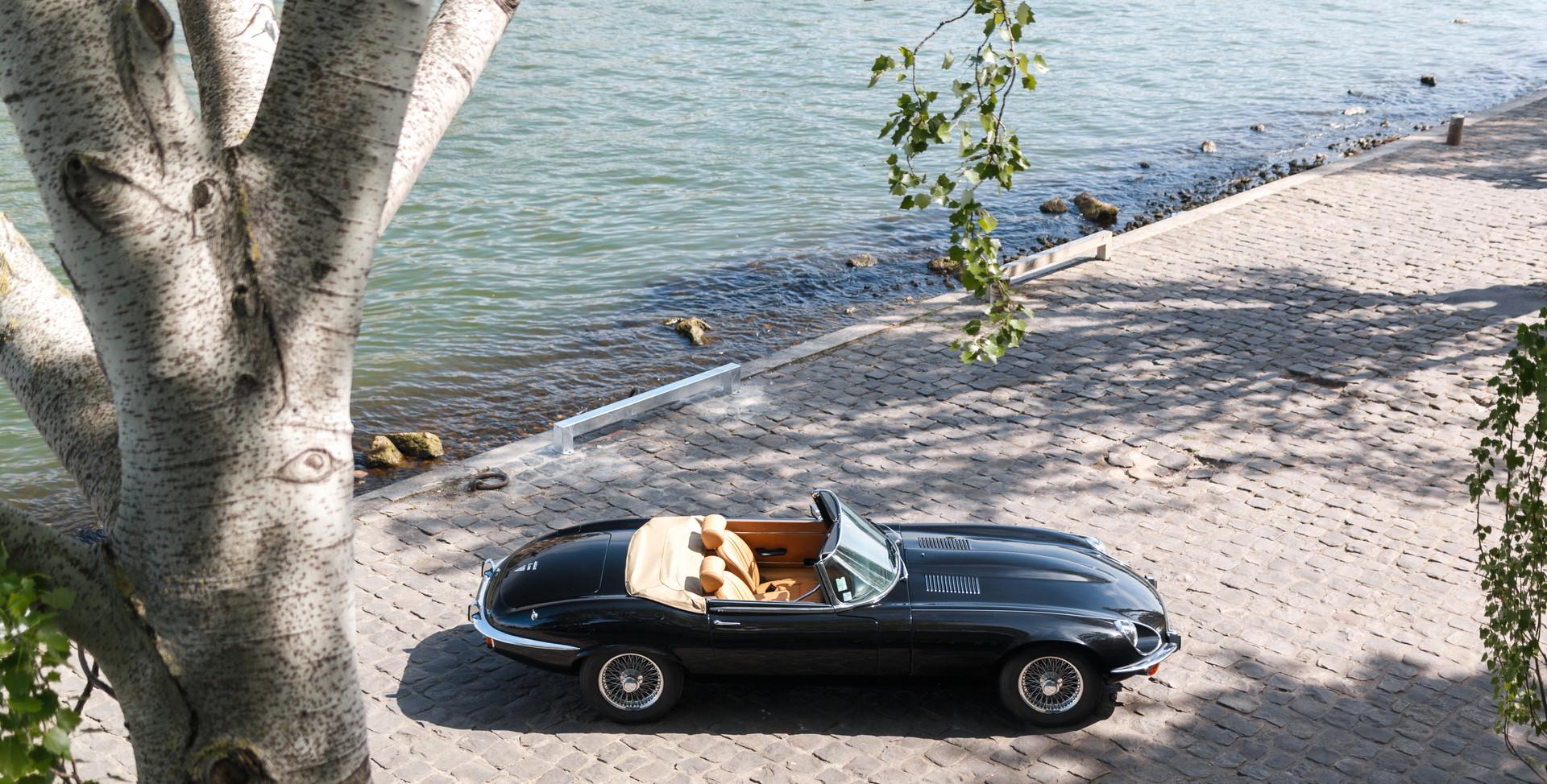 Jaguar Type E profil (2).jpg
