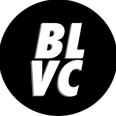 Black Visions Collective