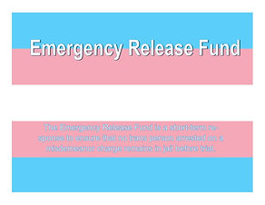 Emergency Release Fund (New York)