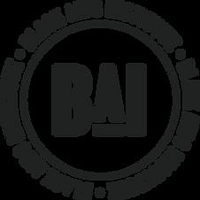 Black AIDS Institute (BAI)