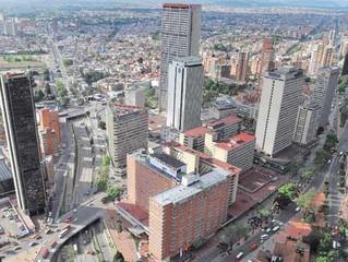 Sembrar un árbol en Bogotá cuesta $212.000