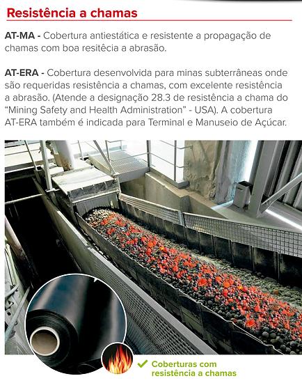 borracha 005.png