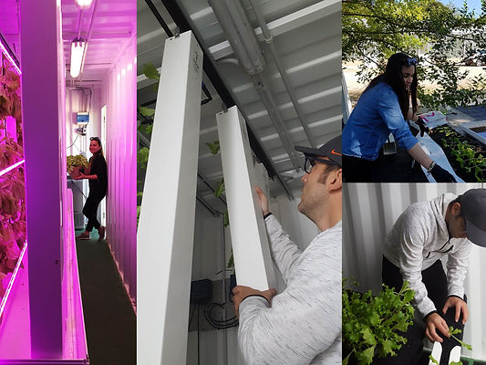 Block Farms' Team