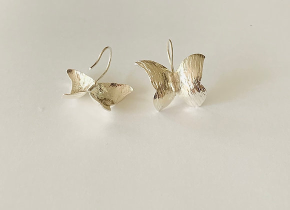 Wild Butterfly Earrings (silver)