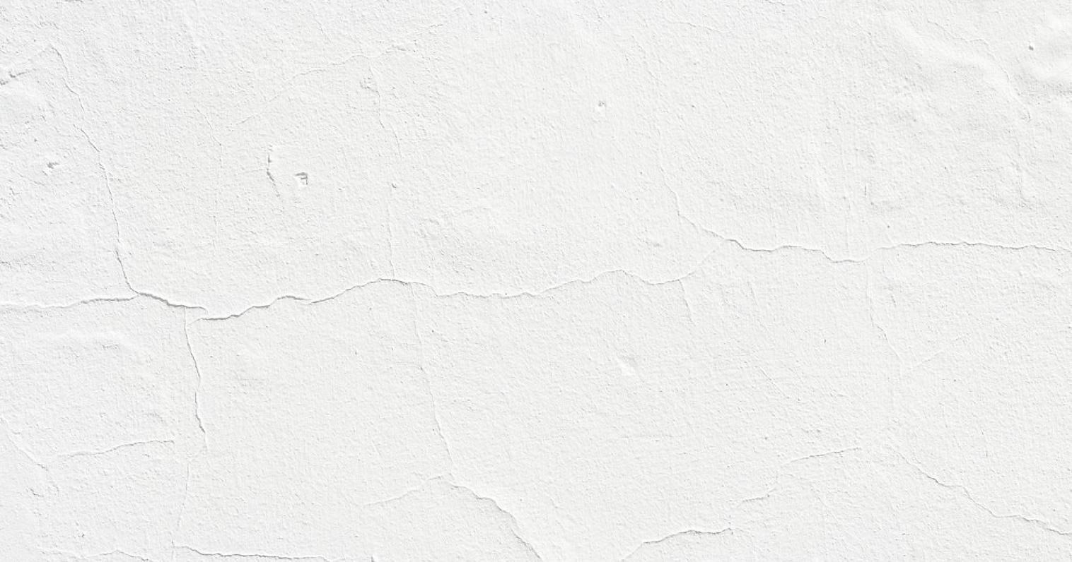 Blank 2000 x 1050 - 2021-03-27T063341.42