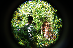 Sniping-the-photographer
