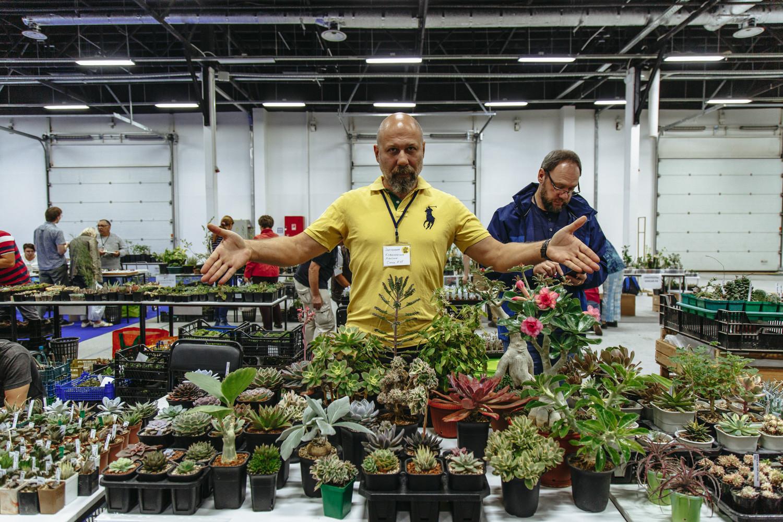 выставка кактусов Кактус Фест