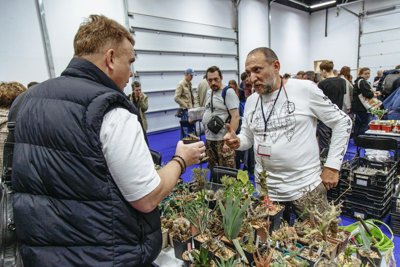 CACTUS FEST - ярмарка выставка кактусов и суккулентов