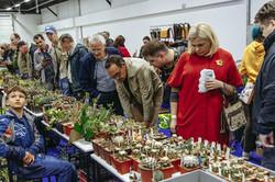 CACTUS FEST - ярмарка выставка кактусов и суккулентовG_4921