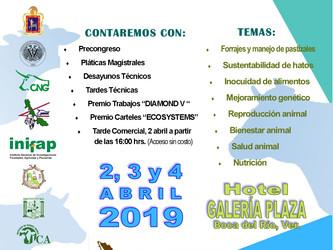 IV CONGRESO AMEBV 2019