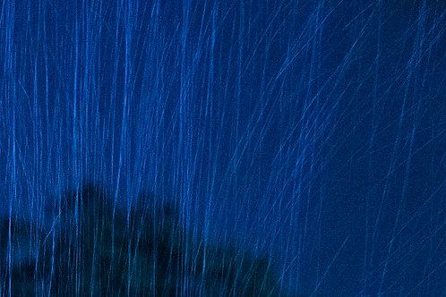 Rain, beautiful rain