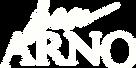 logo IrenARNO_white.png