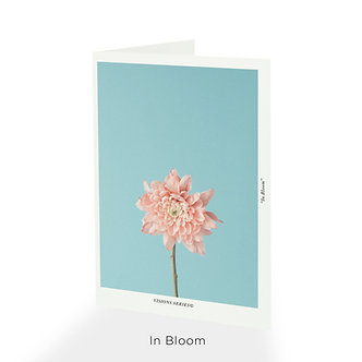 Visions Series© Greeting Cards