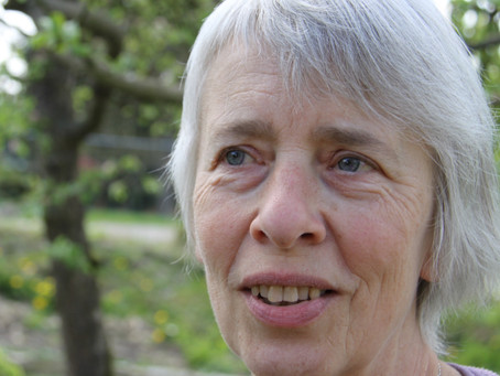 Group Reflections on the Work and Teachings of Ria Baeck: a Collective Narrative