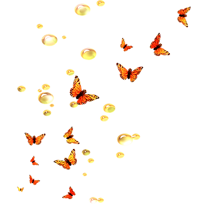 papillons_edited.png