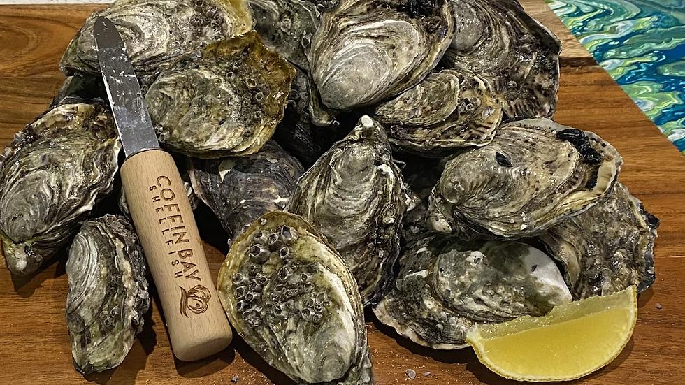 Coffin Bay Oysters Sunshine Coast & Gympie collection 5 Dozen Bag -