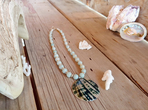Aquamarine & Shell