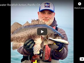 "Topwater Rockfish on Rapala Saltwater Skitter Pop and 5.25"" Skitter ""V"""