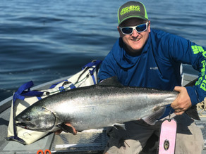 BMO Q3 2018 Fishing Results