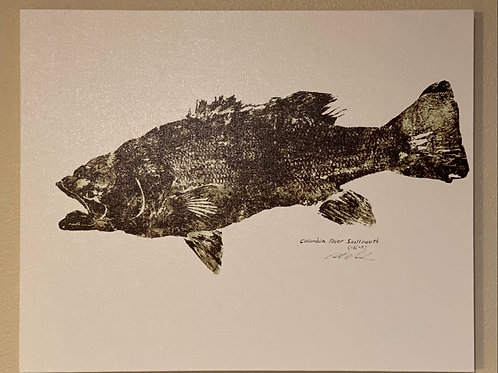 "Columbia River Smallmouth Bass Canvas Print 16"" X 20"""